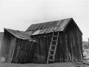 Bodi Ladder by Albert Koetsier