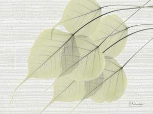 Botree Green on Horizontal by Albert Koetsier