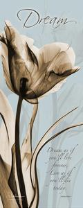 Brown on Blue Tulip Dream by Albert Koetsier