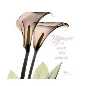 Calla Lily Happiness by Albert Koetsier
