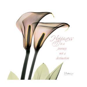 Callas Happiness by Albert Koetsier