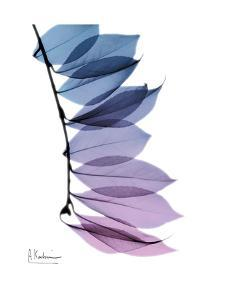 Camelia Leaf in Purp by Albert Koetsier