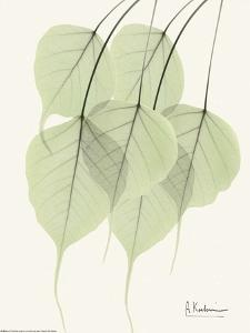 Cascading Bo Tree by Albert Koetsier
