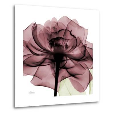 Chianti Rose