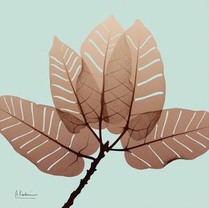 Chopped Ficus Burkey by Albert Koetsier