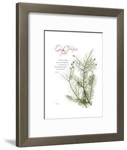 Christmas Evergreen by Albert Koetsier