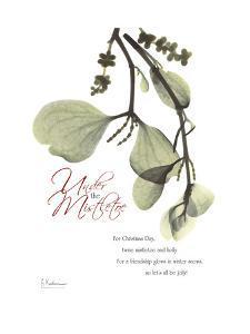 Christmas Mistletoe by Albert Koetsier