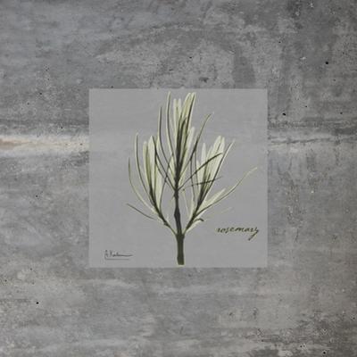 Concrete Rosemary