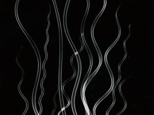 Corkscrew Rush by Albert Koetsier