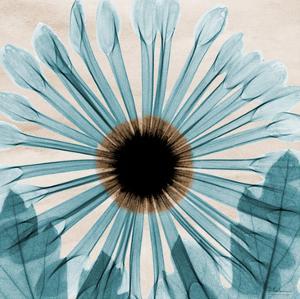 Dream in Blue by Albert Koetsier