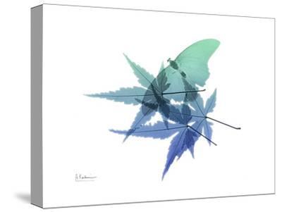 E171 Blue Turq