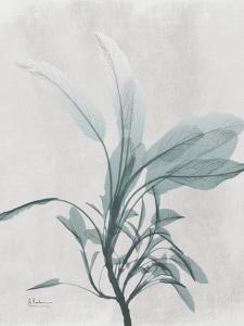Emerald Sage 1 by Albert Koetsier