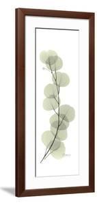 Eucalyptus Branch Up by Albert Koetsier