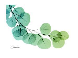 Eucalyptus Green Blue by Albert Koetsier