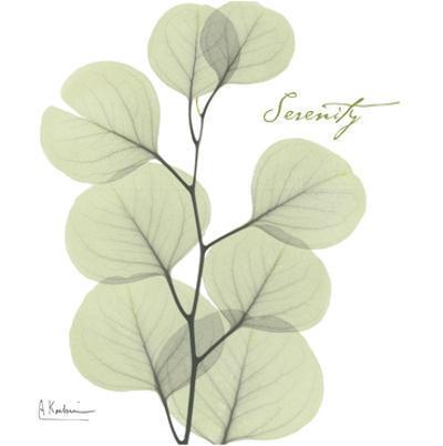 Eucalyptus Green, Serenity by Albert Koetsier