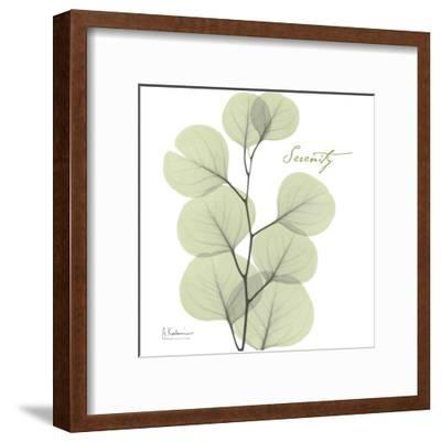 Eucalyptus Green, Serenity