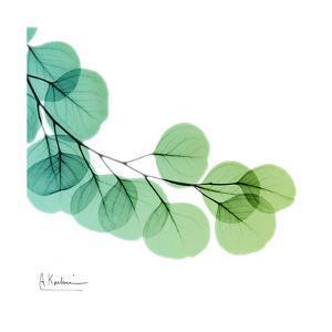 Eucalyptus Green by Albert Koetsier