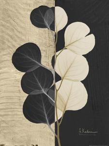 Eucalyptus Invert by Albert Koetsier