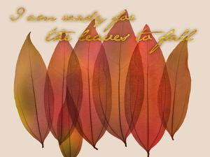 Fall Harvest by Albert Koetsier