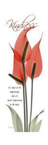 Flamingo Kindness by Albert Koetsier