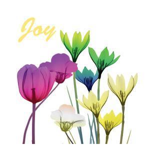Floral Pop Joy by Albert Koetsier