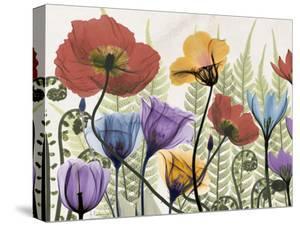Flowers and Ferns 1 by Albert Koetsier