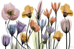 Flowerscape Portrait by Albert Koetsier