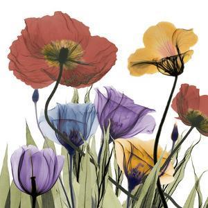 Flowerscape by Albert Koetsier
