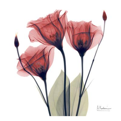 Gentian Trio in Red by Albert Koetsier