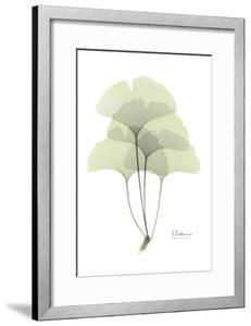 Ginkgo in Pale Green by Albert Koetsier
