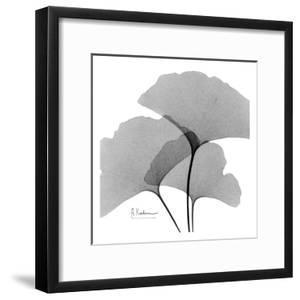 Ginkgo Leaves Trio Black and White by Albert Koetsier