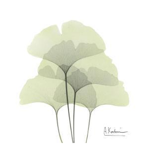 Ginkgo Quad in Green by Albert Koetsier