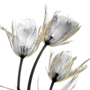 Gold Embellished Tulips 2 by Albert Koetsier