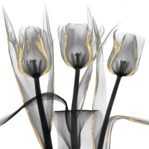 Gold Embellished Tulips 4 by Albert Koetsier
