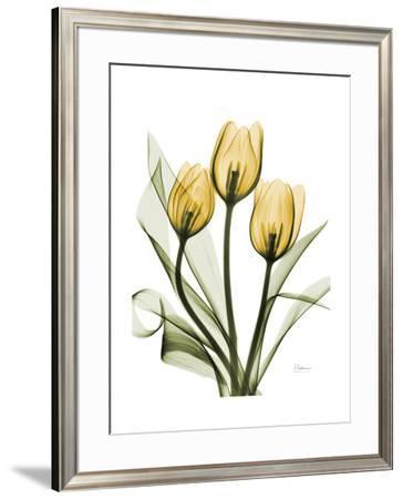 Golden Tulips by Albert Koetsier