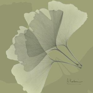 Green Leaf Square 5 by Albert Koetsier