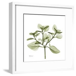 Green Leaves in Bloom II by Albert Koetsier