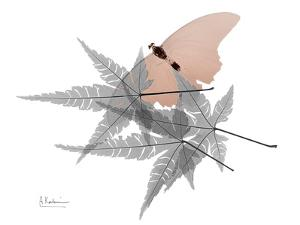Hidden Flight 1 by Albert Koetsier