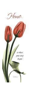 Home Tulips by Albert Koetsier