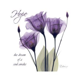 Hope Tulip by Albert Koetsier