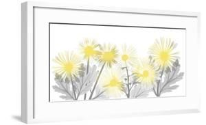 Illuminated Brilliance 1 by Albert Koetsier