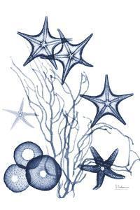 Indigo Aquatic Universe 2 by Albert Koetsier