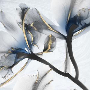 Indigo Luster Marble 2 by Albert Koetsier