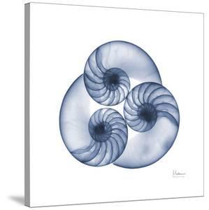Indigo Sea Nautilus by Albert Koetsier