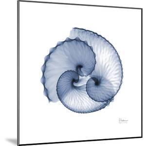 Indigo Sea Shells by Albert Koetsier