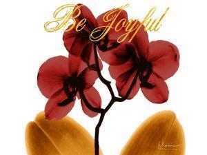 Joyful Orchid by Albert Koetsier