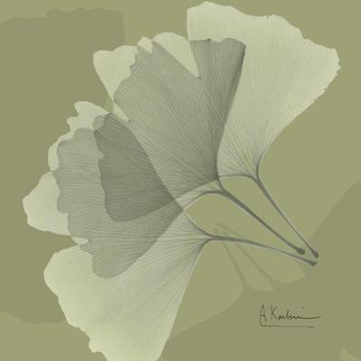 Leaves Trio on Green by Albert Koetsier