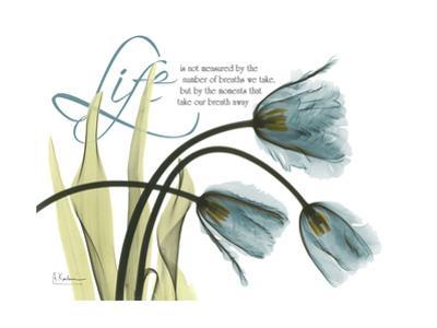 Life Tulips