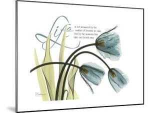 Life Tulips by Albert Koetsier