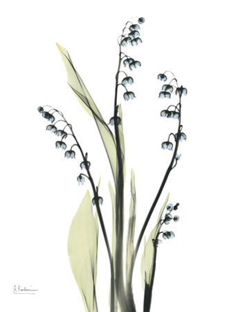Lily of The Valley in Springtime by Albert Koetsier